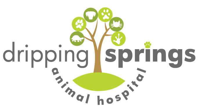Dripping Springs Animal Hospital