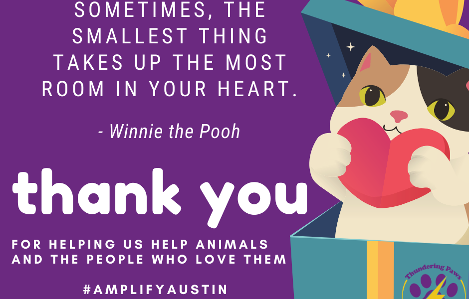 Thank you, Amplify donors!