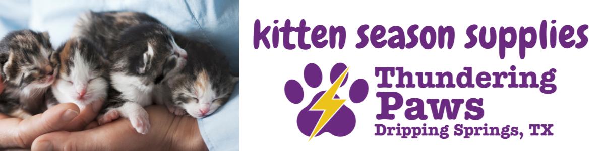 Kitten Shower Wish List